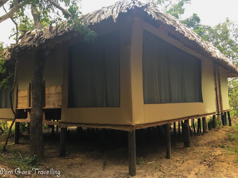 Yala Safari Camping Stilt Tent