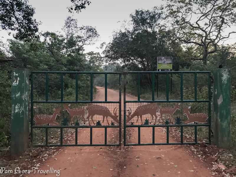 Yala National Park Block 5