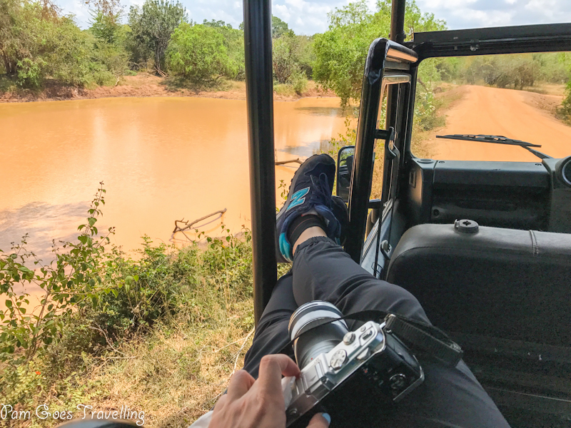 Patiently waiting for the leopards to appear at Yala National Park