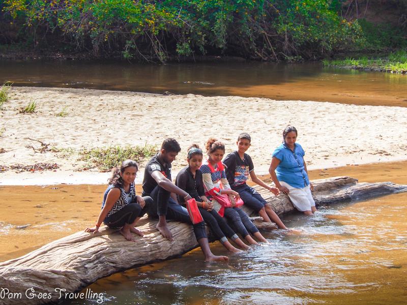 Locals chilling in Sri Lanka safari