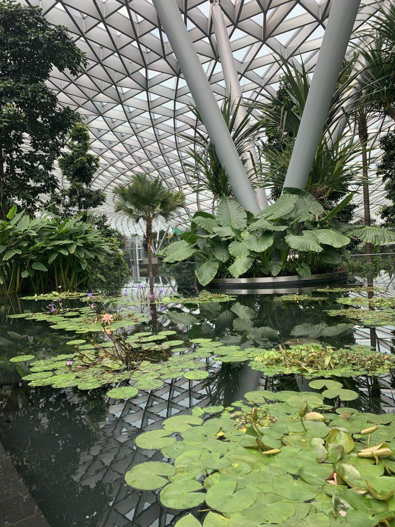 Greenery at Changi Jewel